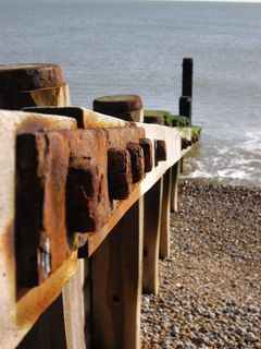 These things are called groynes, well you learn something new ...