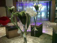 Lily flower arrangements
