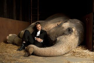 Water+for+elephants