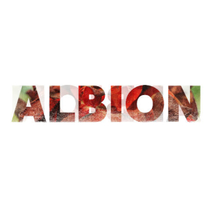 XALBION.jpg.pagespeed.ic