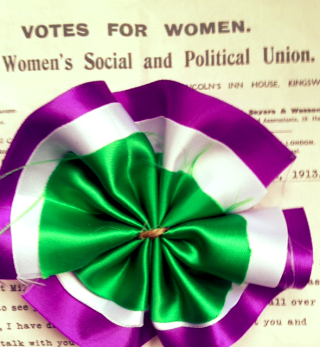 Rev Stan suffragette rosette votes for women