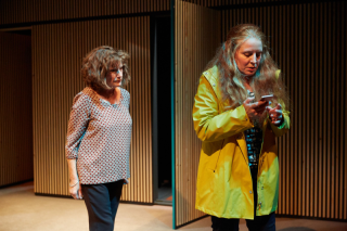 Karen Archer & Eliza Collings (l-r) in The Other Place at the Park Theatre. Photo by Mark Douet. C31B0419