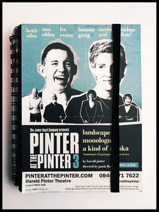 Pinter 3 flyer